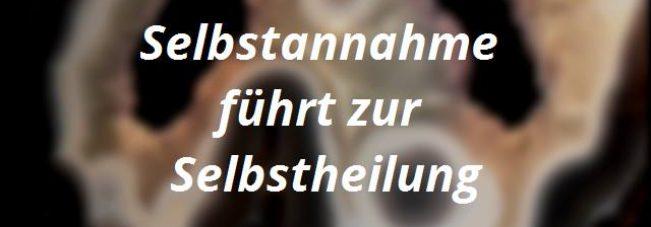 Mala Dumortierit Rosenquarz Picassojaspis Achat